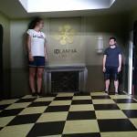 Amesův pokoj